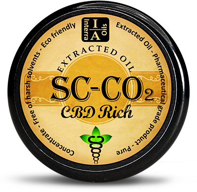CBD Rich Hash Oil